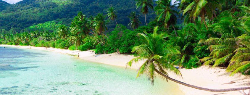 Горящий тур в Тайланд!